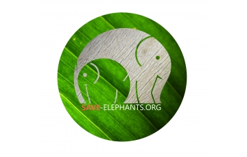 Save-Elephants, z.s.